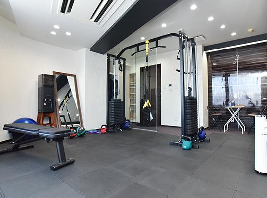Functional trainig gym NEXUS